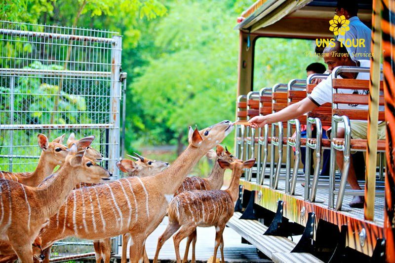 VNS TOUR- Vườn Thú SAFARI WORLD_1