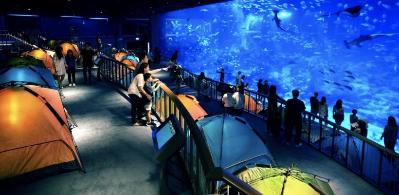 VNS TOUR-SEA AQUARIUM