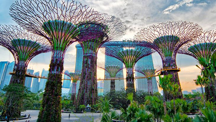 VNS TOUR_GARDENS BY THE BAY