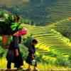 lao-chai-ta-van-5489112b6a87d